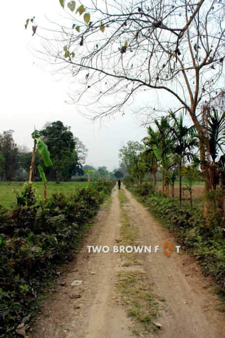 The long village road