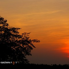 Sunset from a nearby hillock.