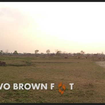 Panoramic view of the fields around our camp.