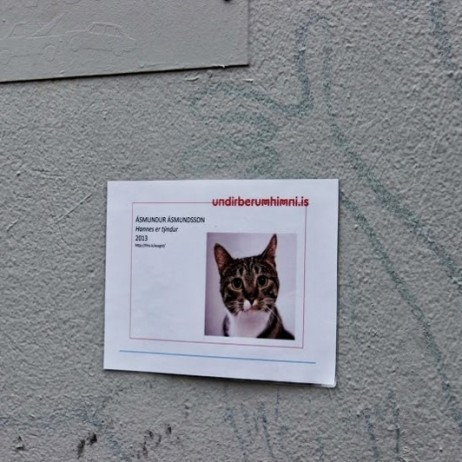 A common sight in most European countries. I saw a similar poster in Brussels. I hope this kitty was found.