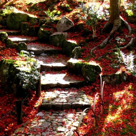 Steps lined red.