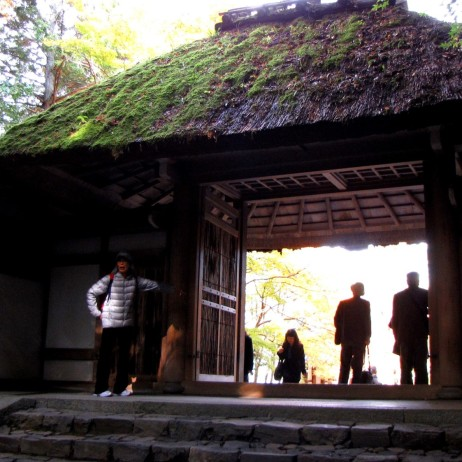 The entrance gate with moss roof.