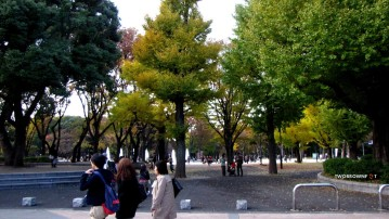 Ueno Park is perfect for strolls.