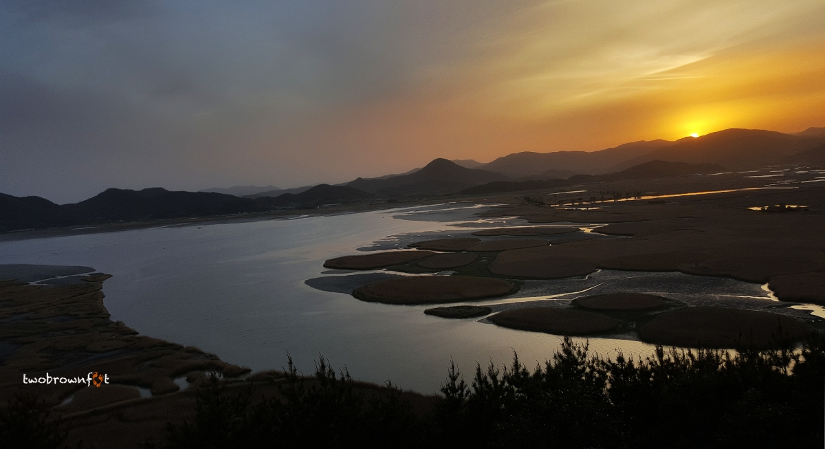 A Race against the Sun in Suncheonman Bay Wetland Reserve