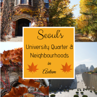 Seoul's University Quarter & Neighbourhoods in Autumn