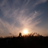 Finding Silver Linings at Seoul Silver Grass Festival